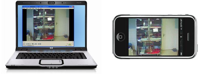 Vidéo-surveillance sur PC et sur Iphone
