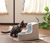 Fontaine à eau pour chat