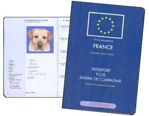 passeport européen chien